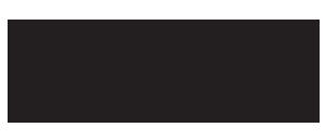 logo Fundacji Inicjatyw Społeczno-Ekonomicznych