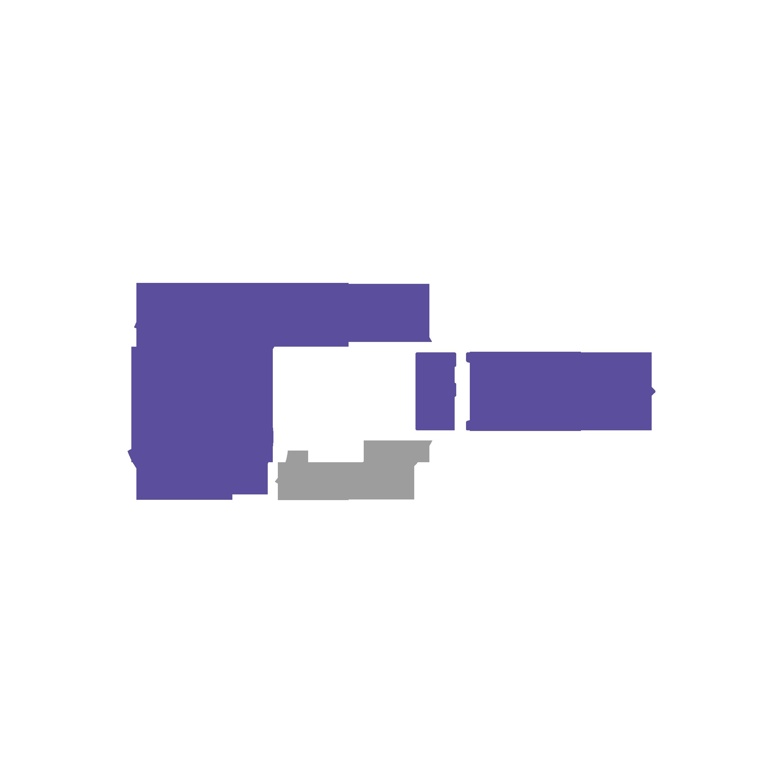 Logo FISE 30 lat